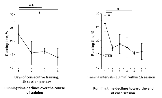 Effect of training on spinal cord imaging in awake mice