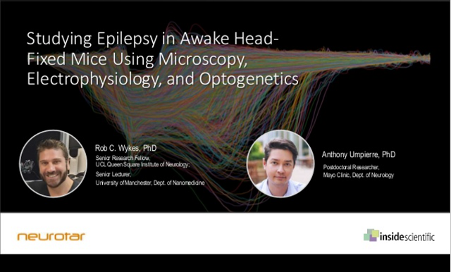 Epilepsy webinar cover image