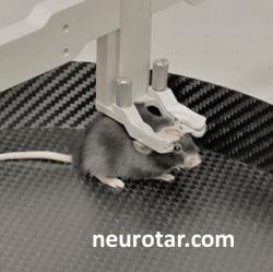 Neurotar's Mobile HomeCage