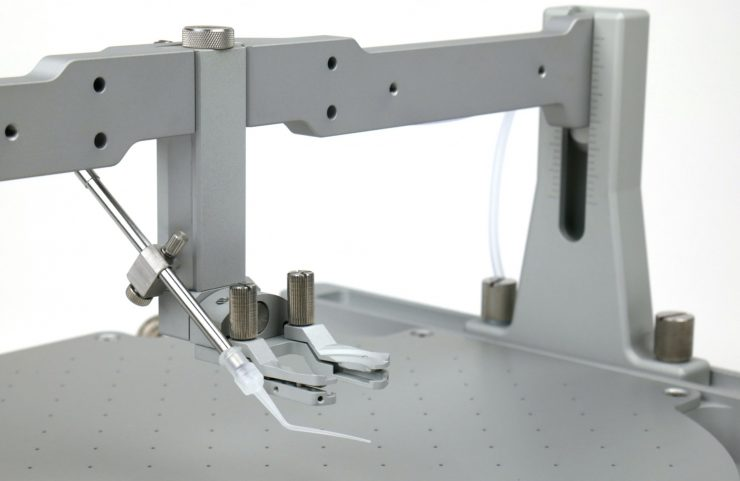 Lick port mounted on the clamp