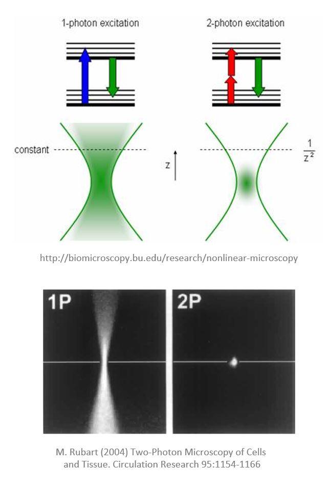 Two-photon microscopy principle